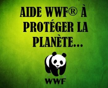 wwf 1